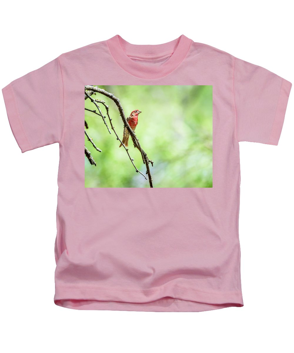 House Finch Kids T-Shirt featuring the photograph Male House Finch Out On A Limb by Debra Martz