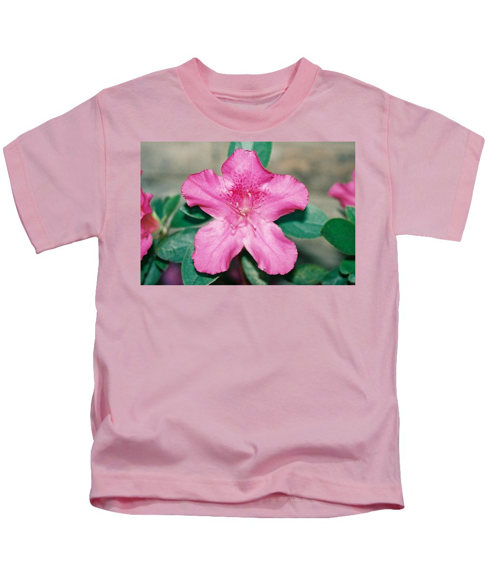 Pink Flower Azalea Kids T-Shirt featuring the photograph My Azalea by Cindy New