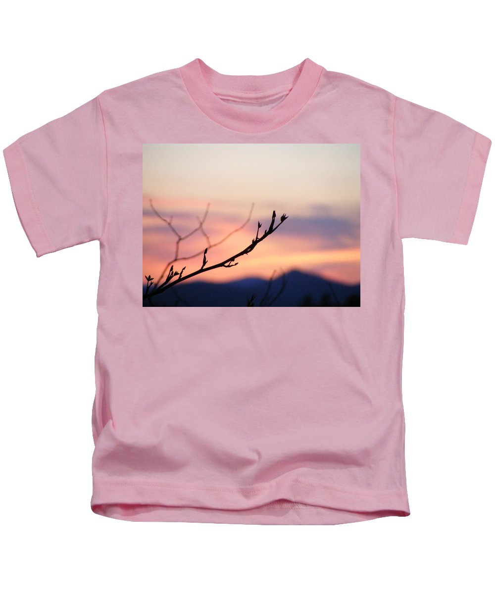 Mountains Kids T-Shirt featuring the photograph Pastel Twig by Zen WildKitty