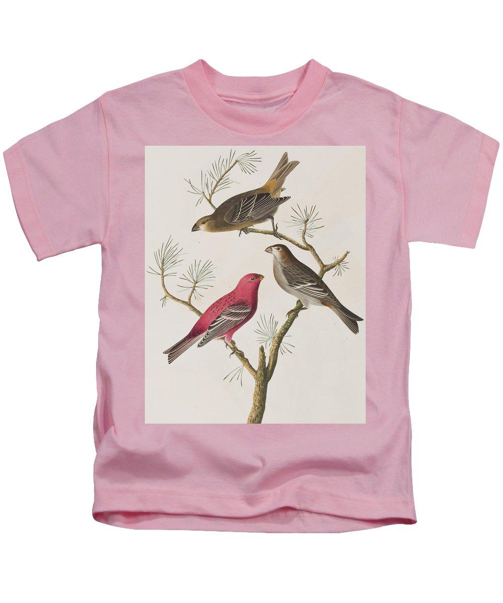 Pine Kids T-Shirt featuring the painting Pine Grosbeak by John James Audubon