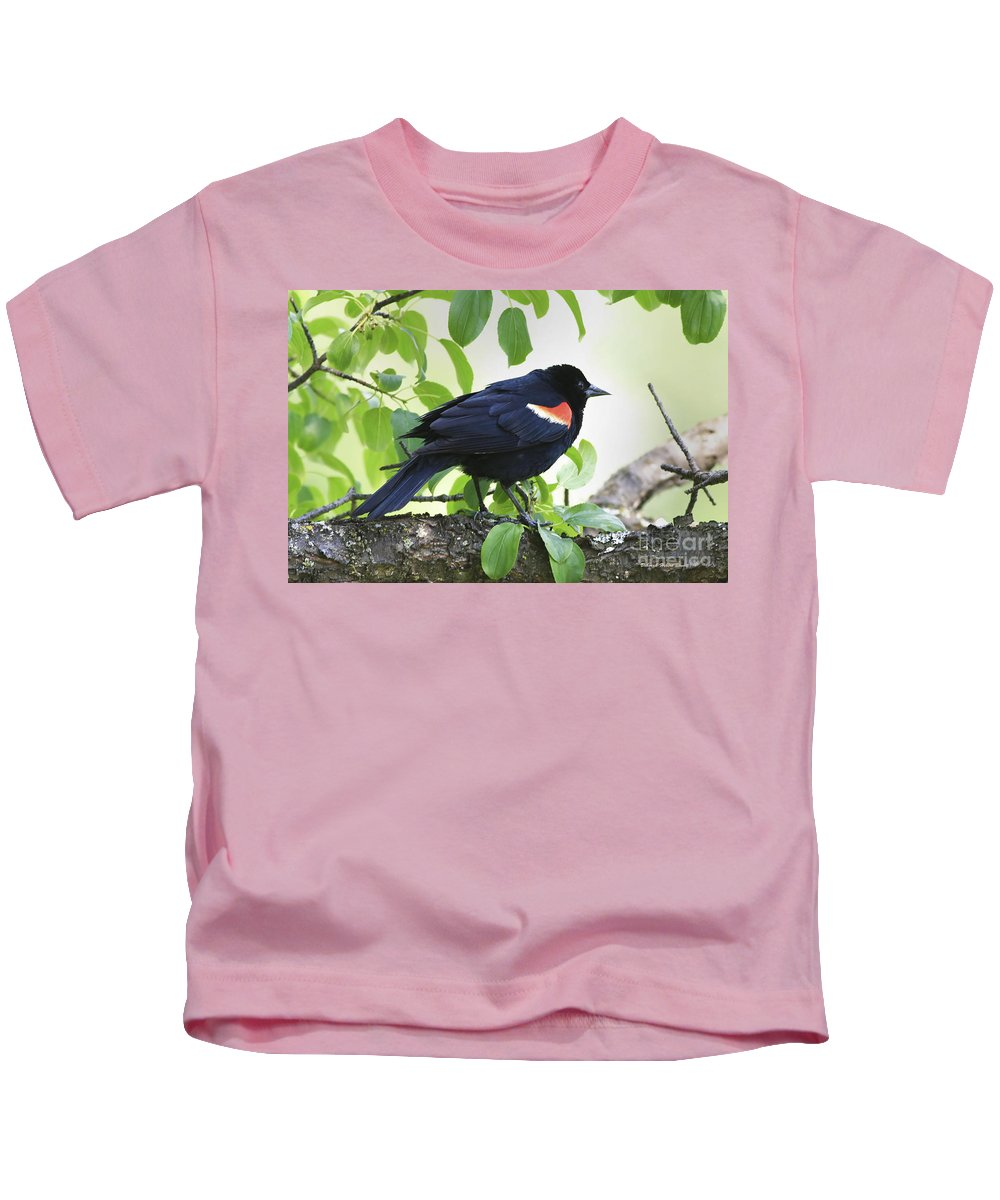 Bird Kids T-Shirt featuring the photograph Red Winged In Montreal by Deborah Benoit