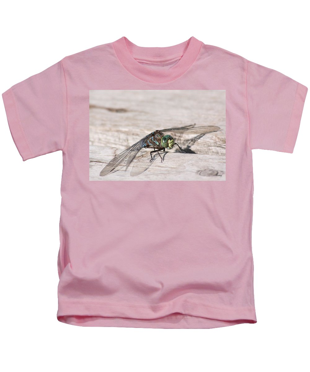 Dragonfly Nature Bug Flying Insect Wings Eyes Colorful Creature Kids T-Shirt featuring the photograph Rescued Dragonfly by Andrea Lawrence