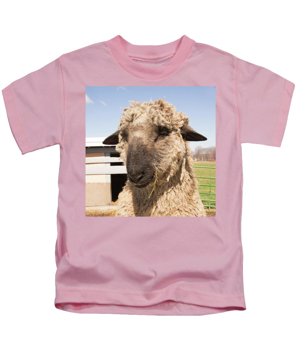 Sheep Kids T-Shirt featuring the photograph Sheep Face by Diane Schuler