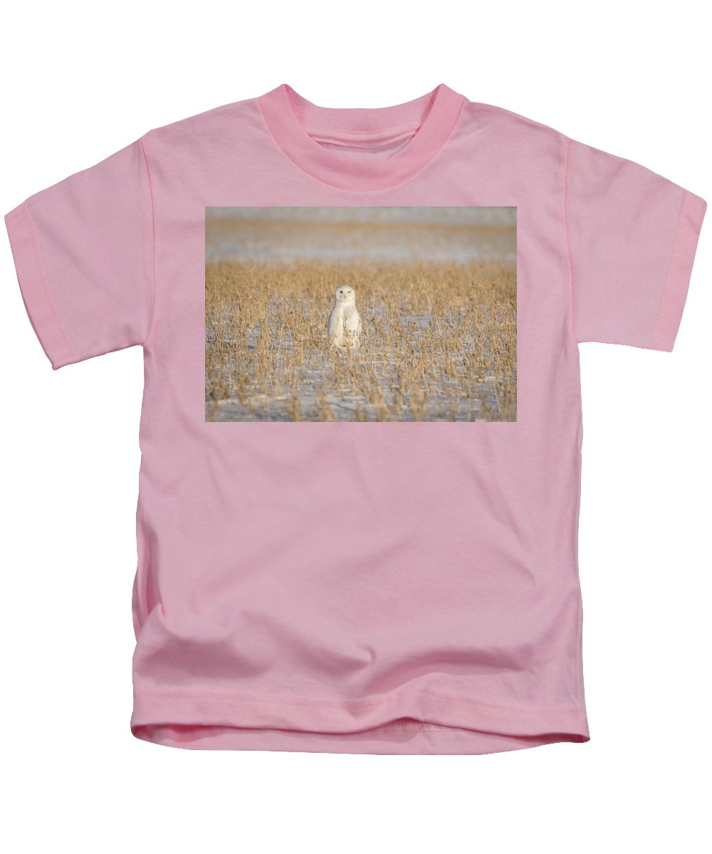 Snowy Owl (bubo Scandiacus) Kids T-Shirt featuring the photograph Snowy Owl 2016-4 by Thomas Young