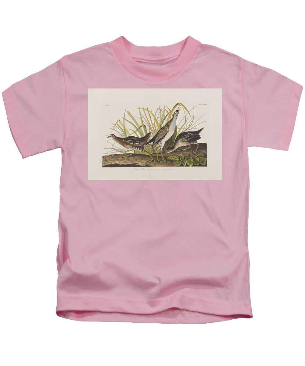 Audubon Kids T-Shirt featuring the painting Sora Or Rail by John James Audubon
