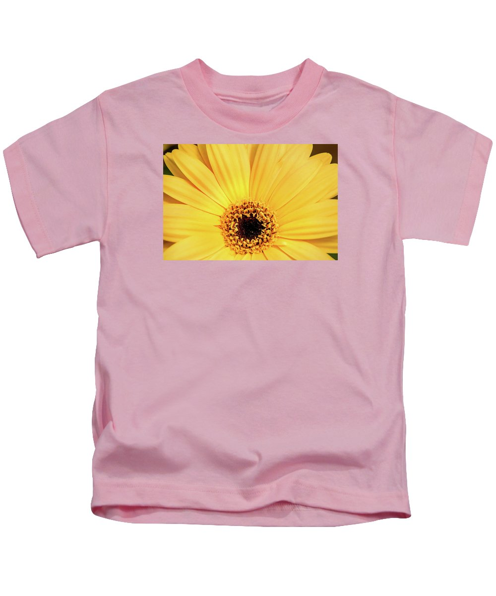 Flower Kids T-Shirt featuring the photograph Sunrise Gerbera by Don Johnson