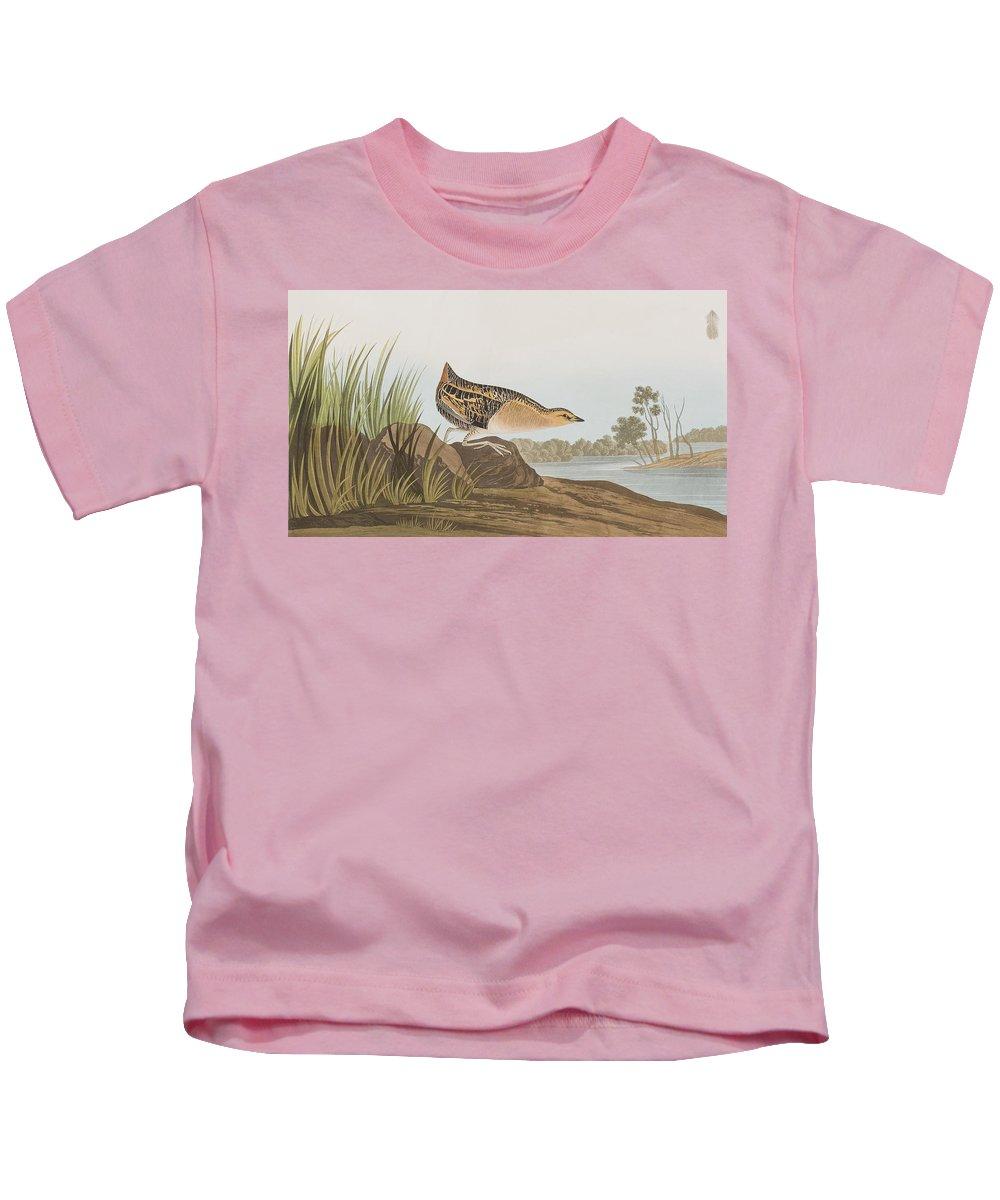 Rail Kids T-Shirt featuring the painting Yellow-breasted Rail by John James Audubon