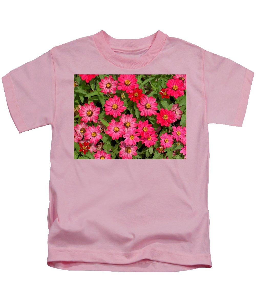 Zinnia Kids T-Shirt featuring the photograph Zinnia Riot by Carolyn Jacob