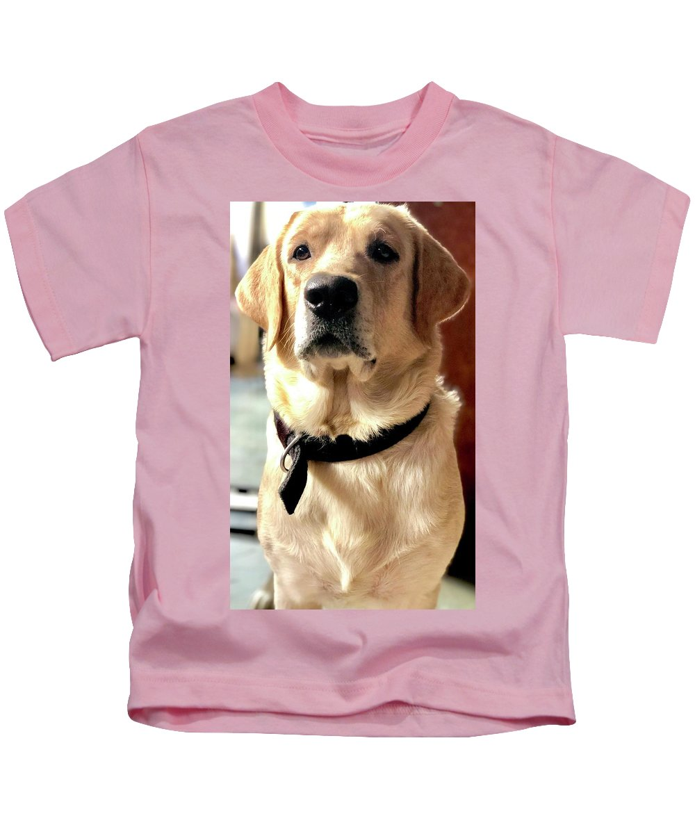 Labrador Dog Photographs Kids T-Shirts