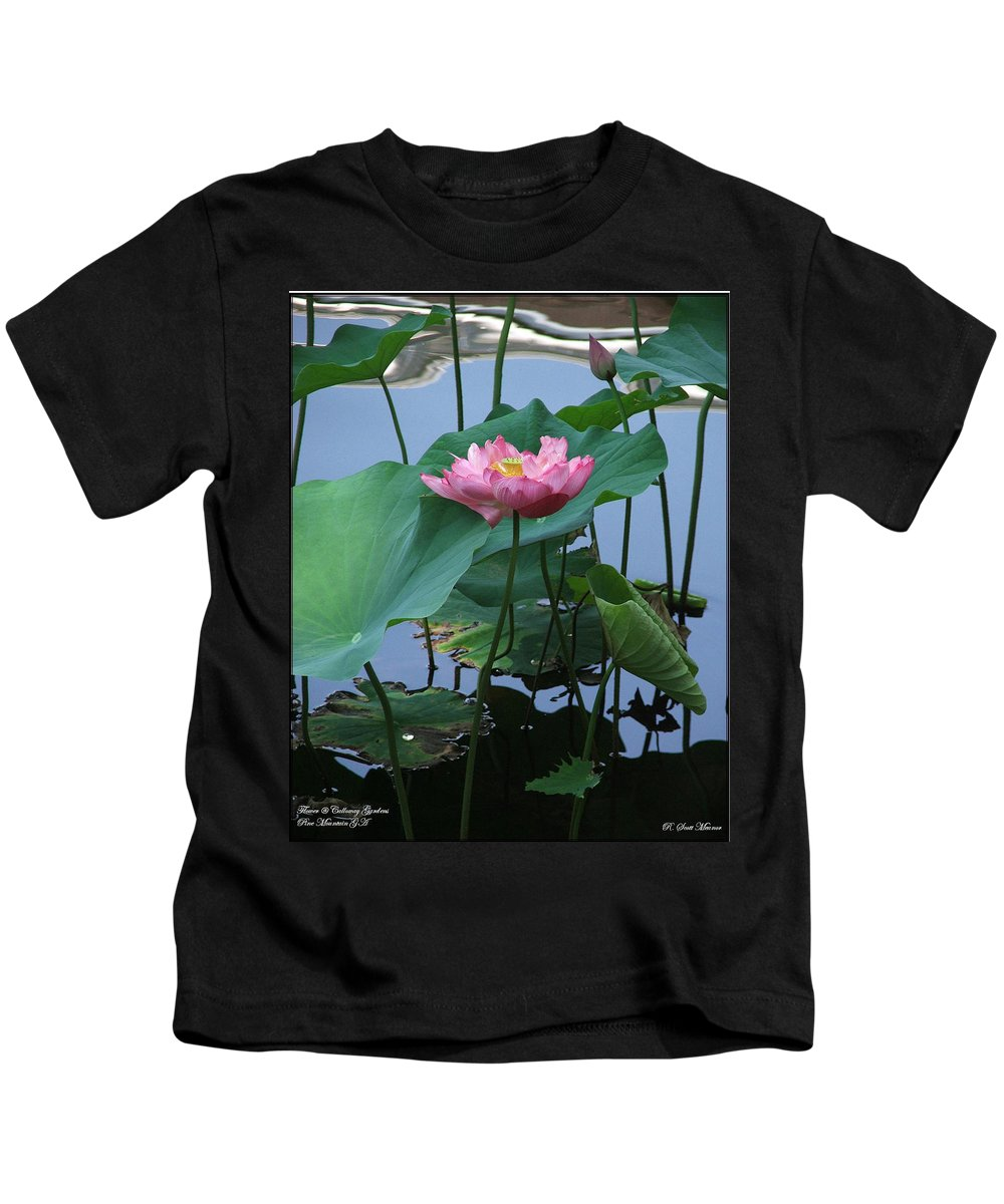 Lotus Kids T-Shirt featuring the photograph Lotus Flower At Calloway by Robert Meanor