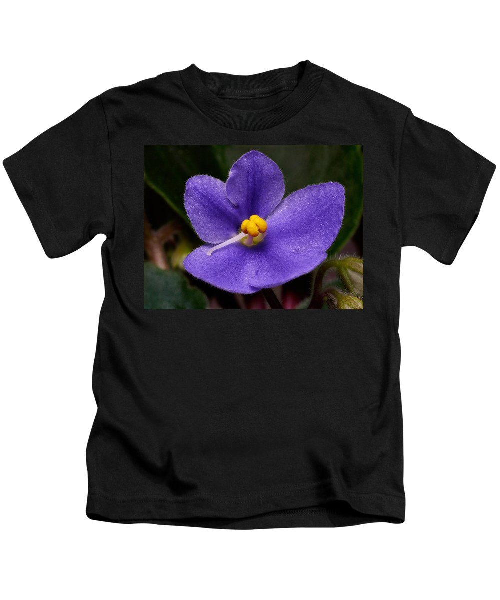 Lehto Kids T-Shirt featuring the photograph African Violet by Jouko Lehto