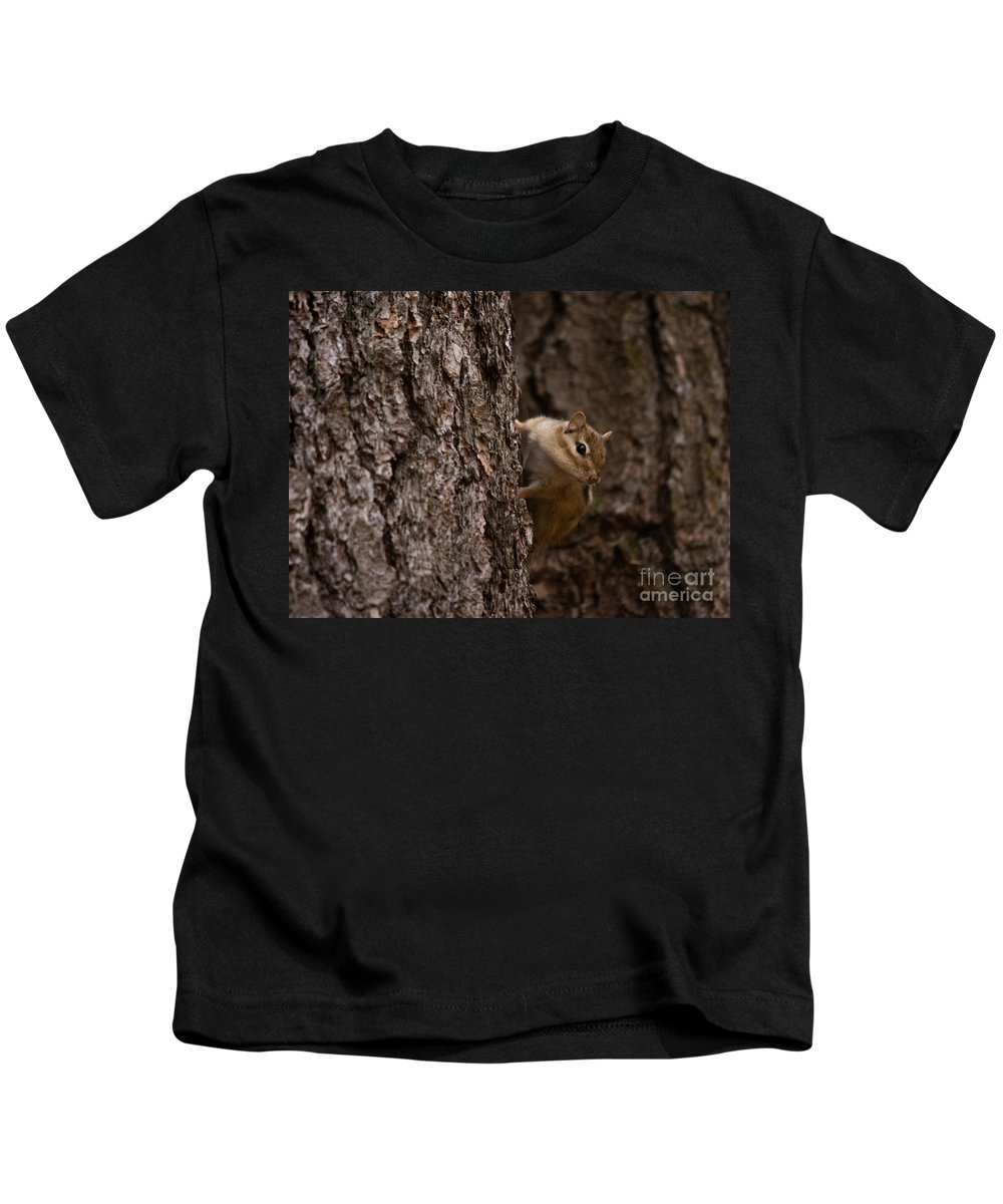 Kids T-Shirt featuring the photograph Cheeky Chipmunk by Cheryl Baxter