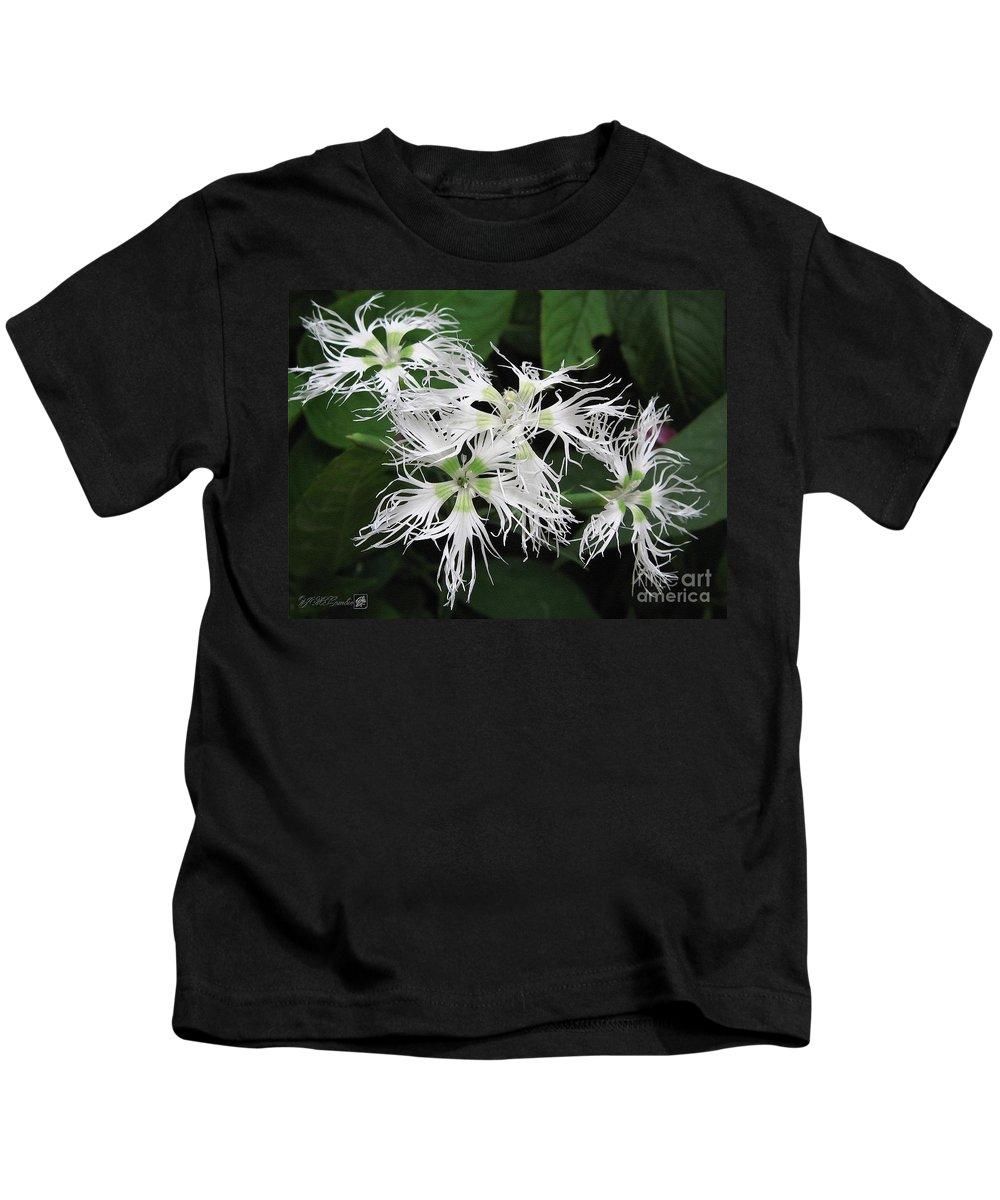 Dianthus Kids T-Shirt featuring the painting Dianthus Superbus - White by J McCombie