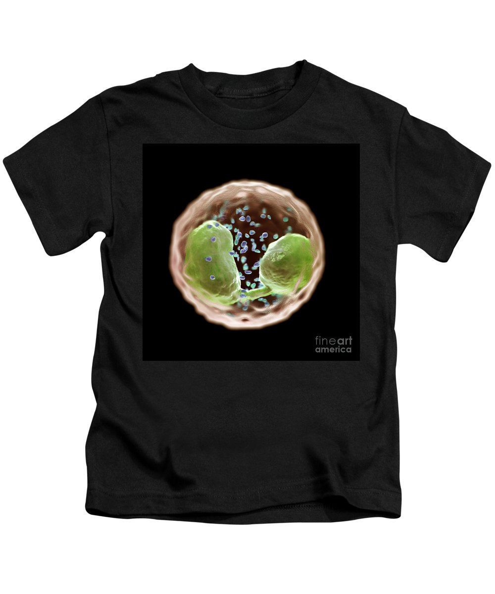 Cells Kids T-Shirt featuring the photograph Eosinophil Cell by Science Picture Co