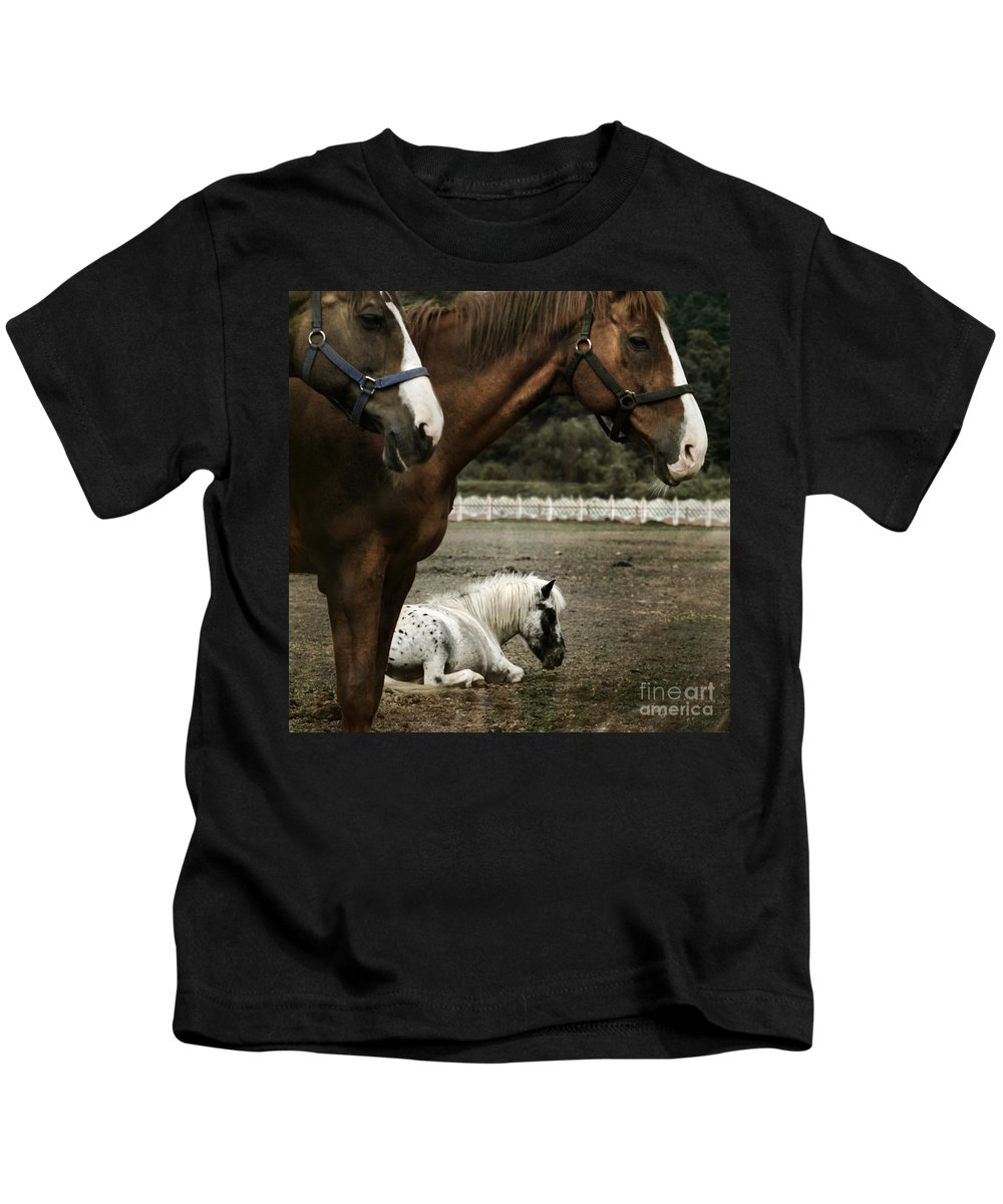 Appaloosa Kids T-Shirt featuring the photograph Having A Rest by Angel Ciesniarska