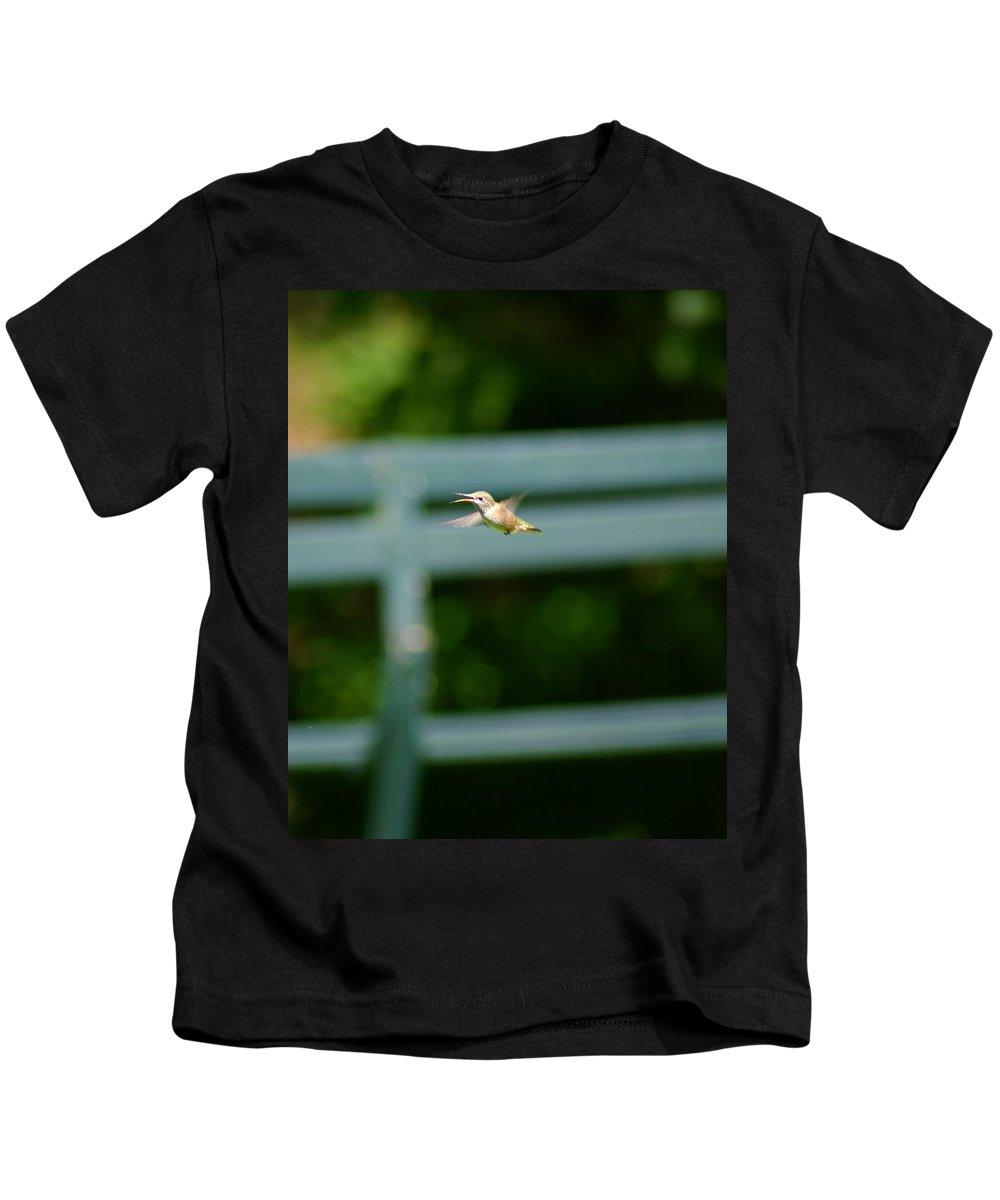 Hummingbird Kids T-Shirt featuring the photograph Hummer In Flight by Ben Upham III
