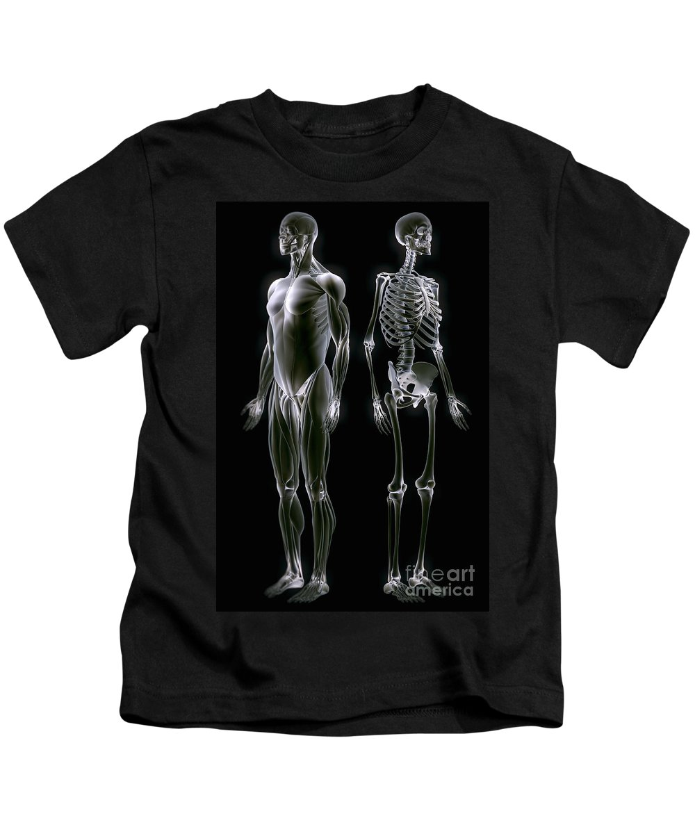 Transparent Kids T-Shirt featuring the photograph Muscles And Bones by Science Picture Co