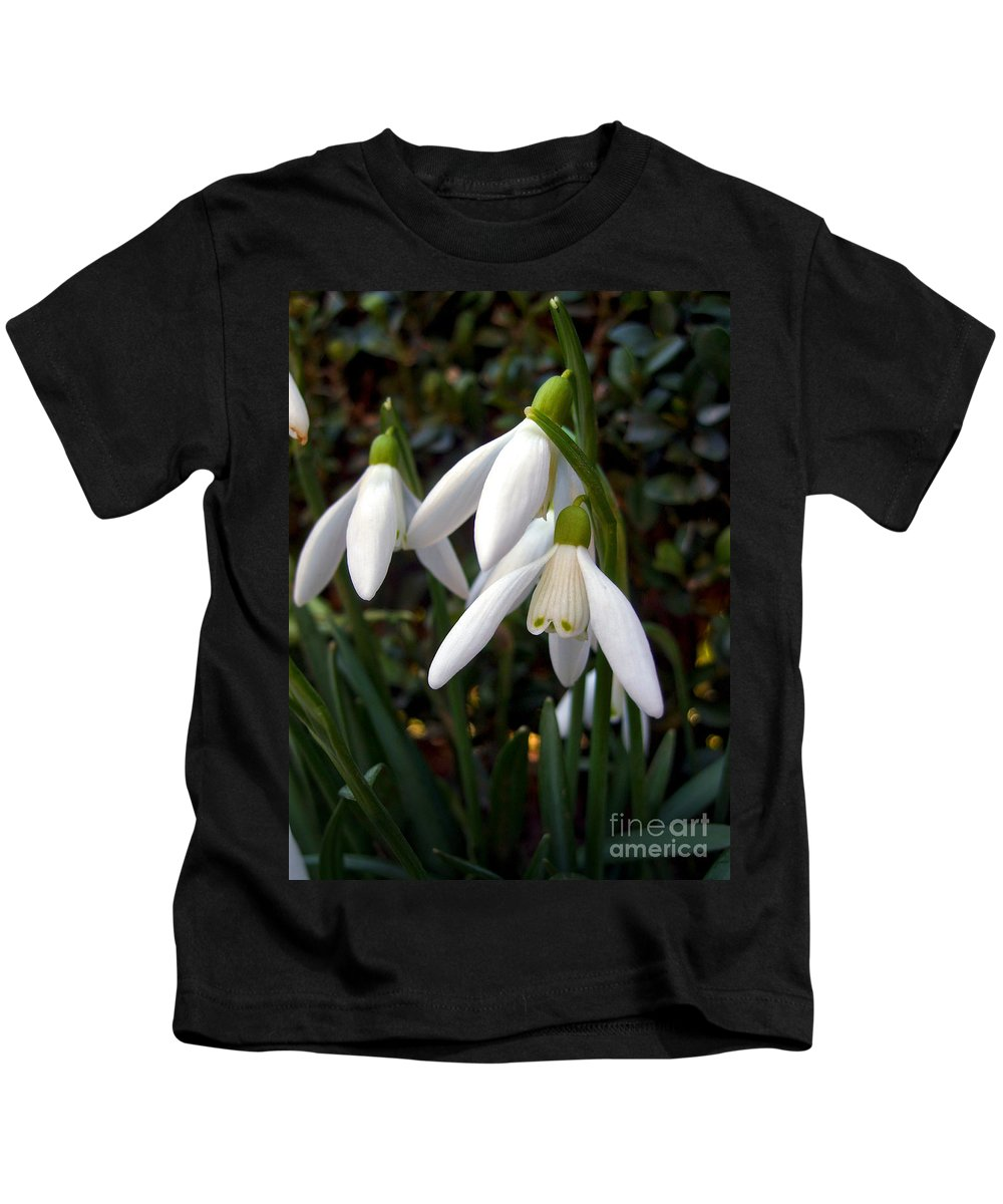Snowdrops Kids T-Shirt featuring the photograph Snowdrops by Nina Ficur Feenan