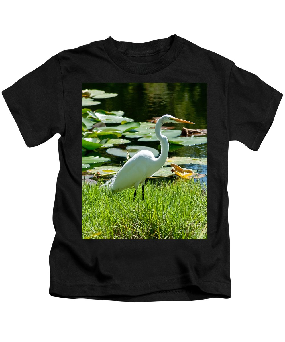 Snowy Egret Kids T-Shirt featuring the photograph Snowy Egret by Stephen Whalen