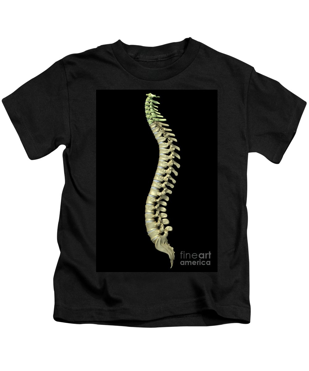 Digitally Generated Image Kids T-Shirt featuring the photograph The Cervical Vertebrae by Science Picture Co
