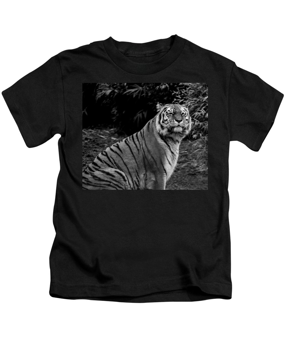 Tiger Kids T-Shirt featuring the photograph Tiger Portrait by Martin Newman
