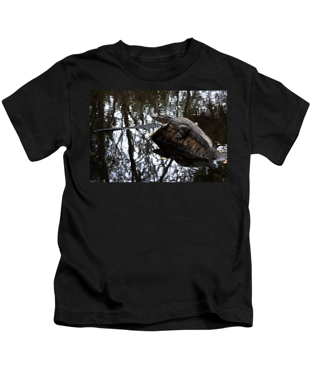 Alligator Kids T-Shirt featuring the photograph Viewing My Domain by Ed Gleichman