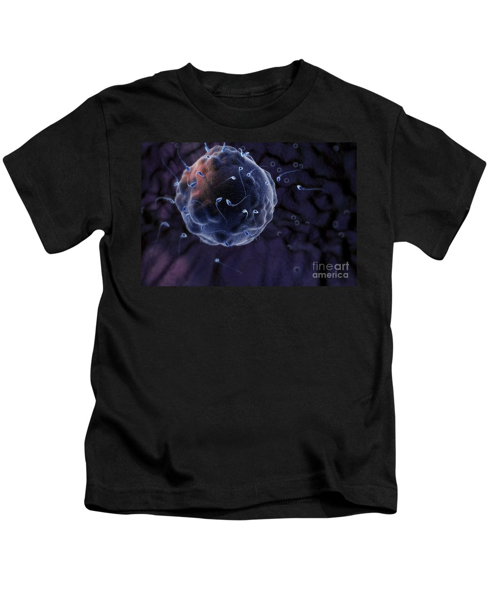 Human Anatomy Kids T-Shirt featuring the photograph Fertilization by Science Picture Co