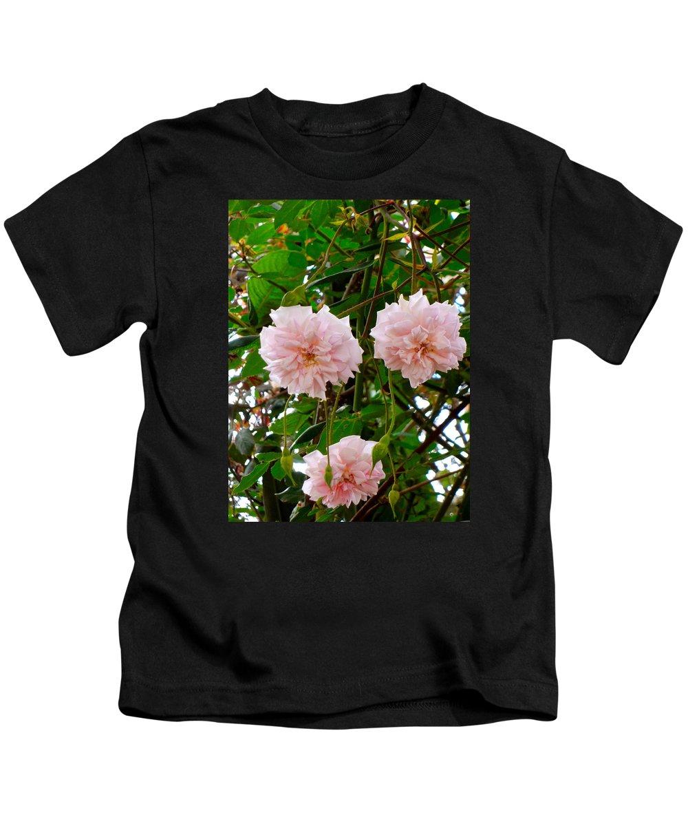 Kids T-Shirt featuring the photograph Renewal Series by Esther Wilhelm Pridgen