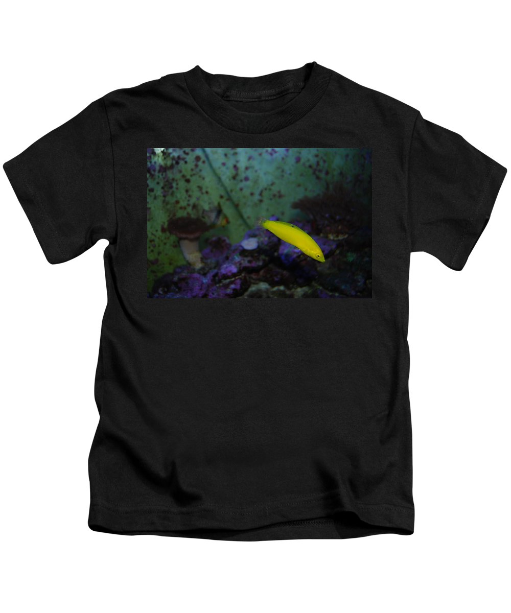 Taken Through Side Of Aquarium Kids T-Shirt featuring the photograph Tropical Fish And Coral by Robert Floyd