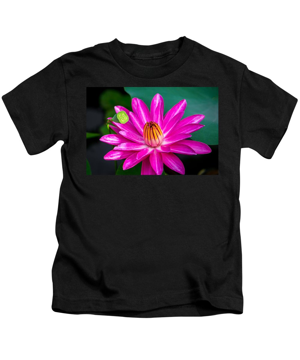 Flowers Kids T-Shirt featuring the photograph Water Lily by Dennis Goodman
