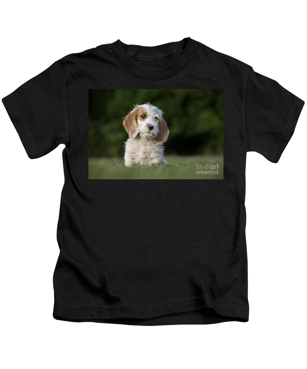 Mammal Kids T-Shirt featuring the photograph 110506p204 by Arterra Picture Library