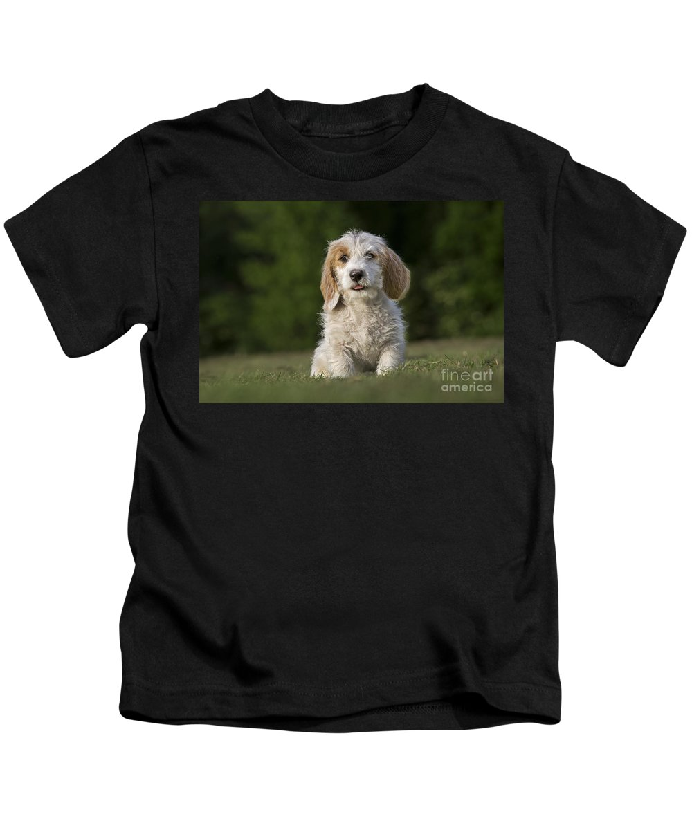 Mammal Kids T-Shirt featuring the photograph 110506p211 by Arterra Picture Library
