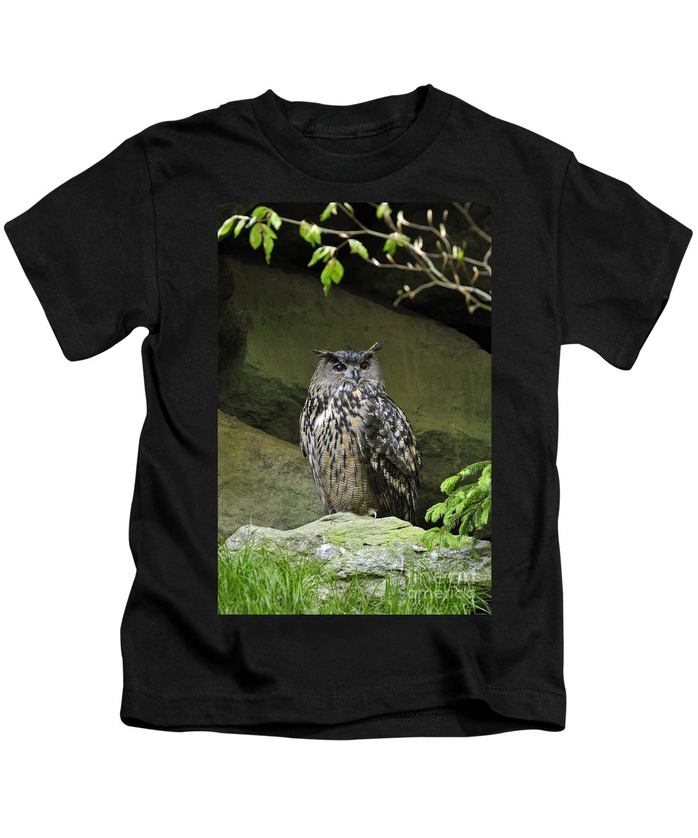 Eurasian Kids T-Shirt featuring the photograph 110613p013 by Arterra Picture Library