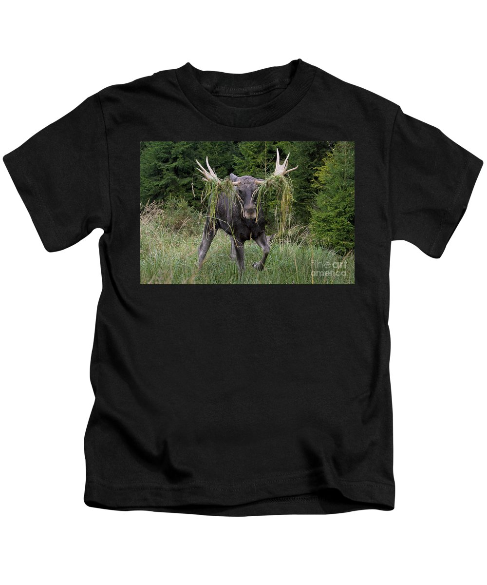 Moose Kids T-Shirt featuring the photograph 111216p111 by Arterra Picture Library