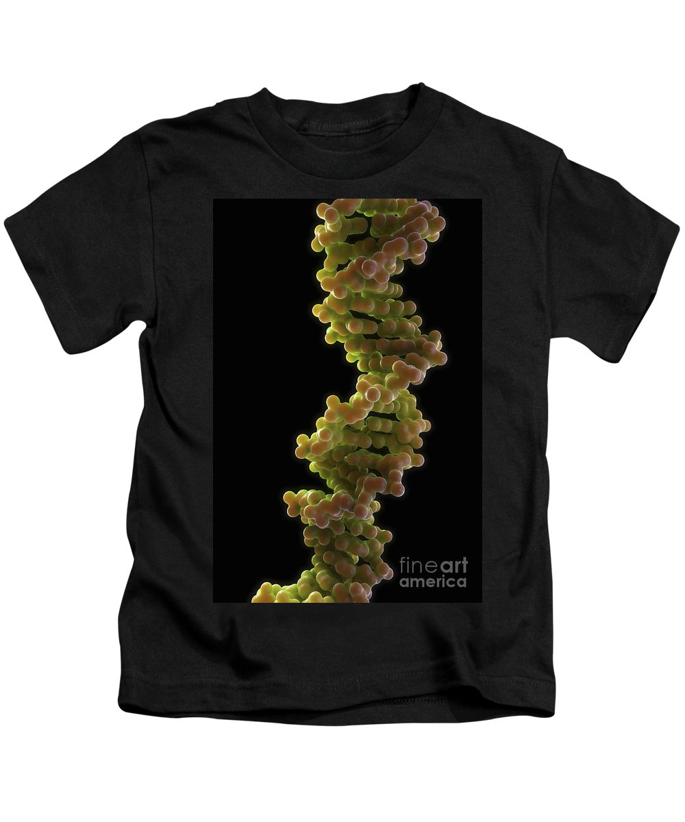 Close Up Kids T-Shirt featuring the photograph Human Dna by Science Picture Co