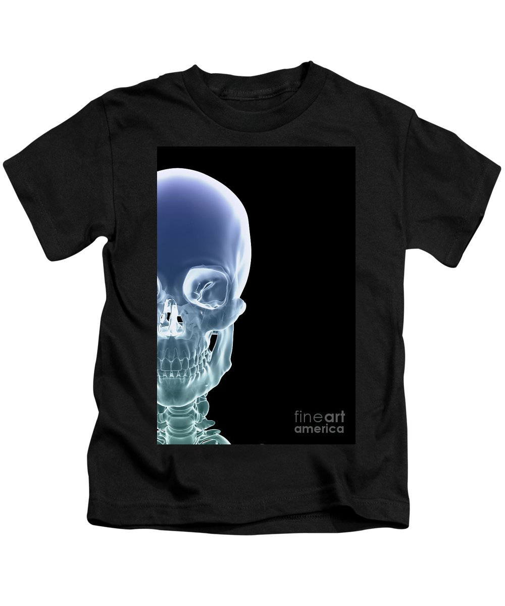 Biomedical Illustration Kids T-Shirt featuring the photograph The Skull by Science Picture Co