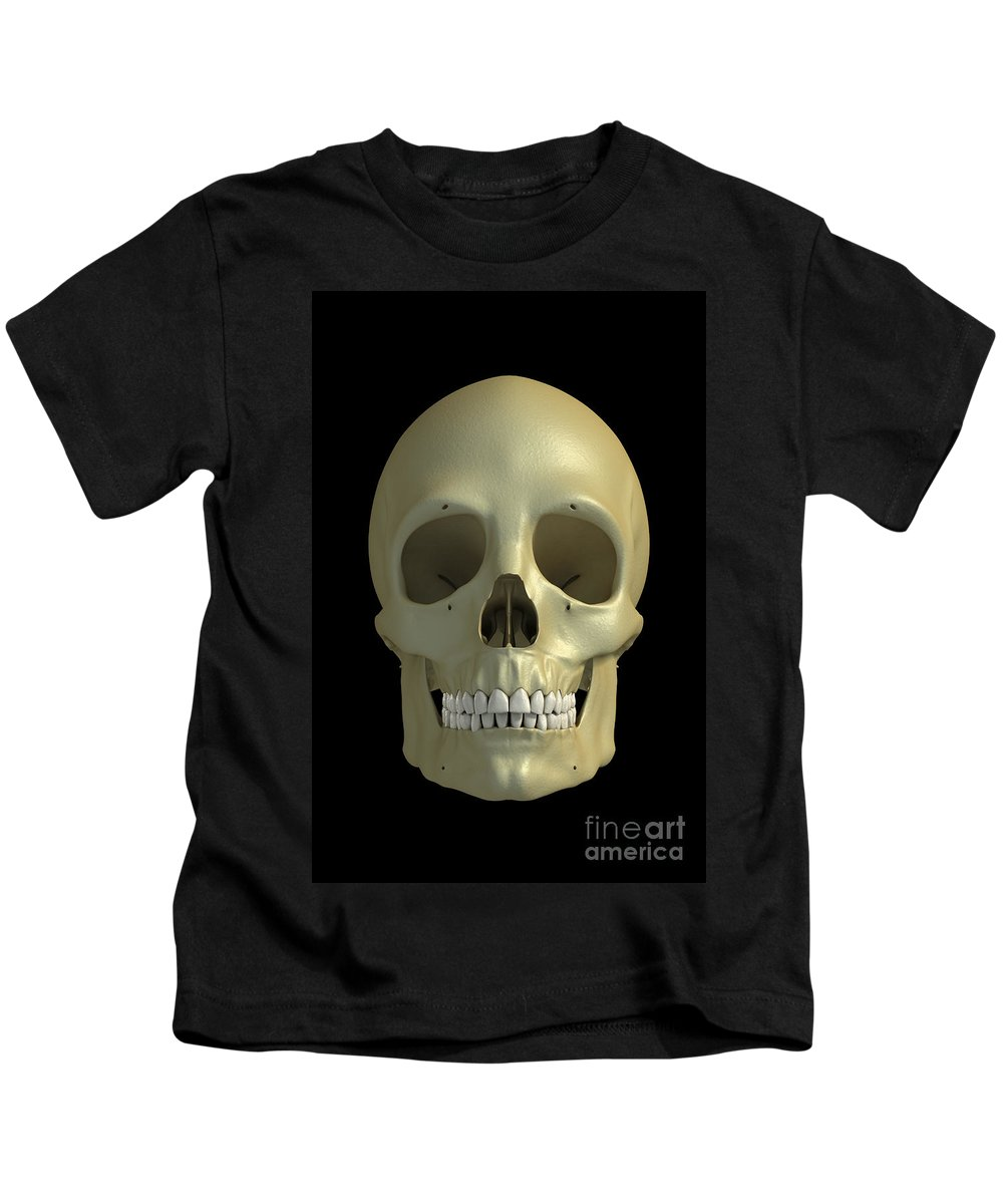 Facial Anatomy Kids T-Shirt featuring the photograph The Skull by Science Picture Co