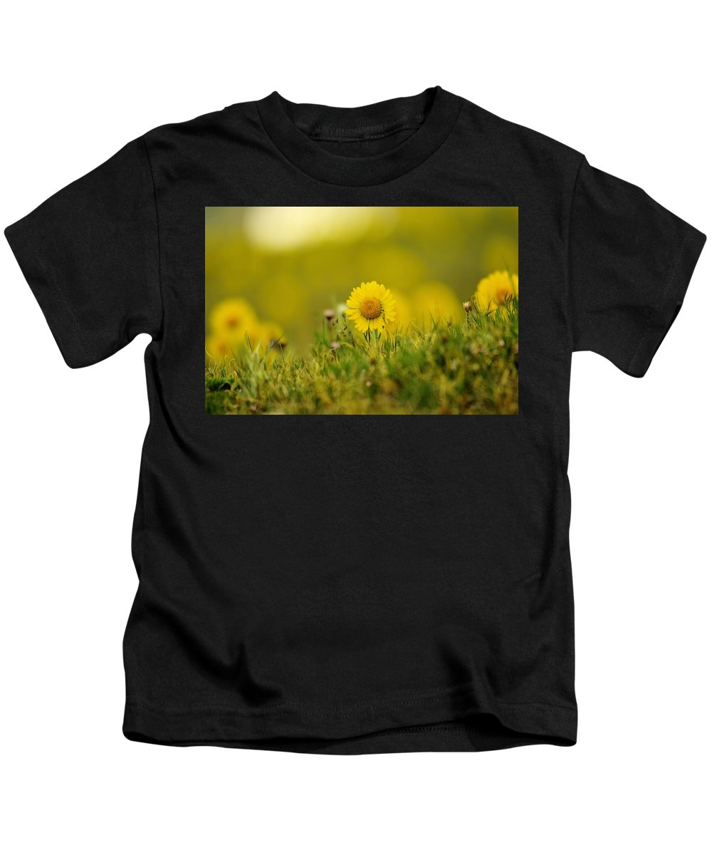 Flowers Kids T-Shirt featuring the photograph Alpine Flowers by Jeff Swan