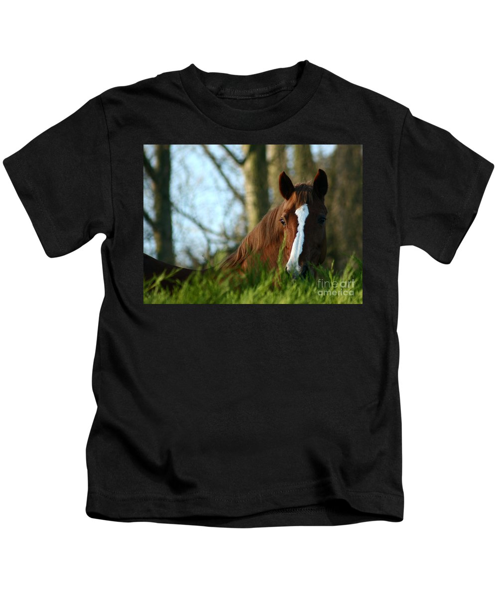 Chestnut Horse Kids T-Shirt featuring the photograph Behind The Fence by Angel Ciesniarska