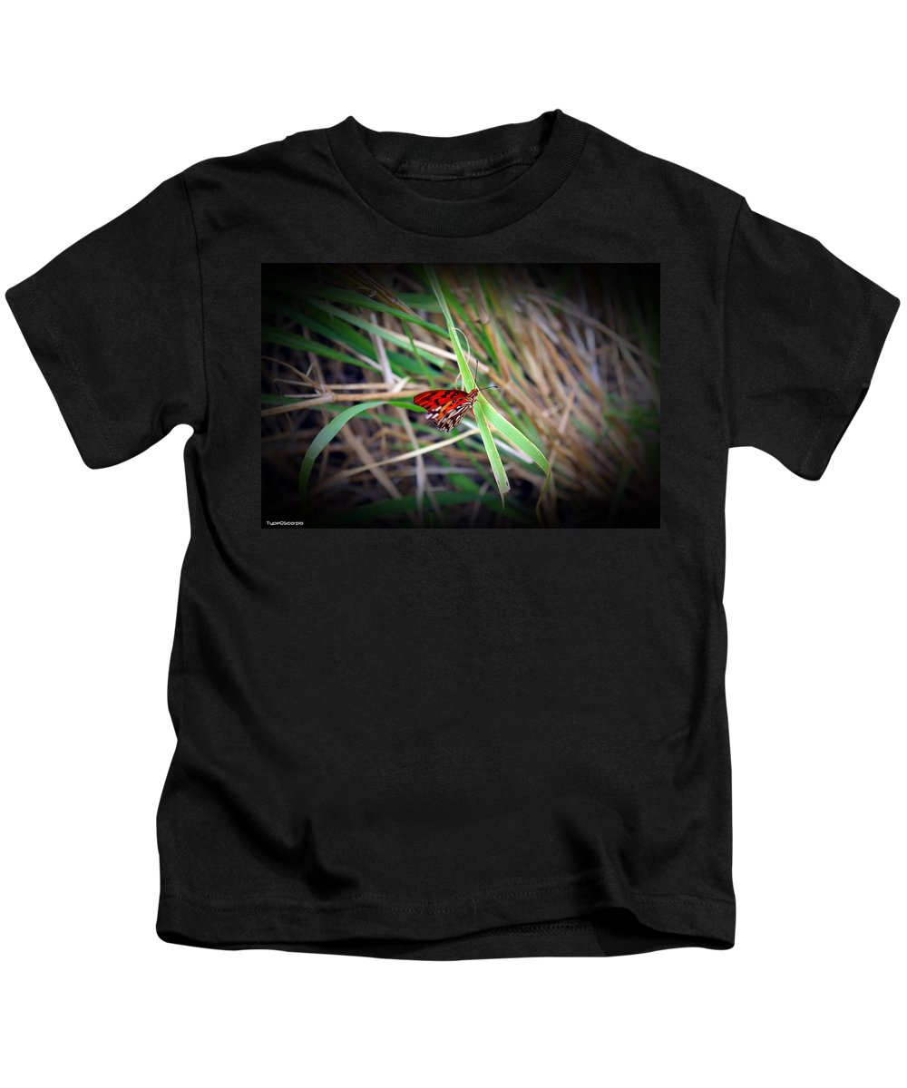 Butterfly Kids T-Shirt featuring the photograph Butterfly by James Markey