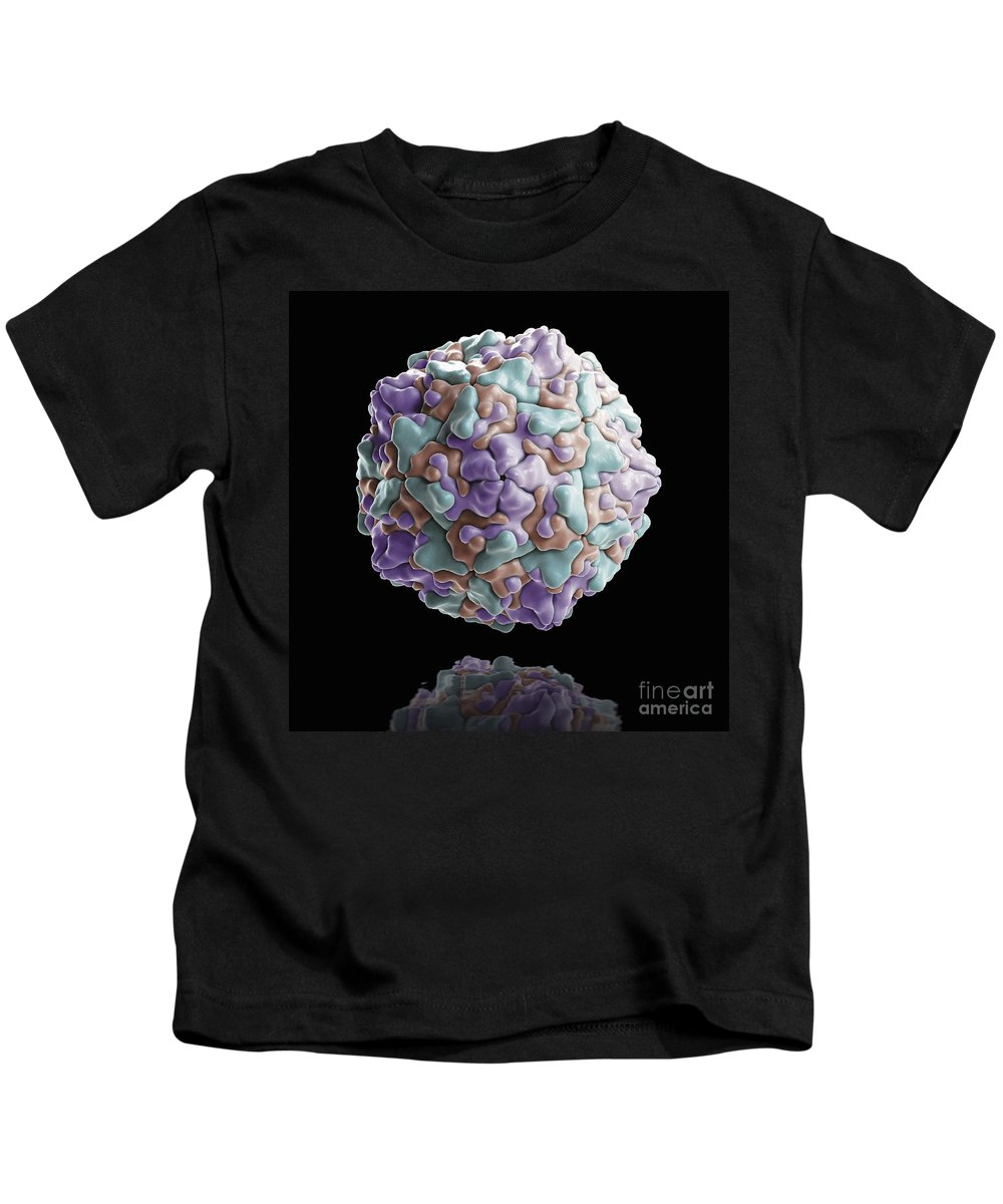 Enterovirus Kids T-Shirt featuring the photograph Coxsackie B Virus by Science Picture Co