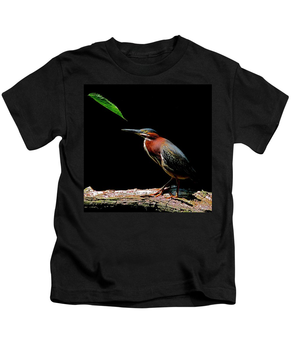 Florida Kids T-Shirt featuring the photograph Green Heron by Stuart Harrison