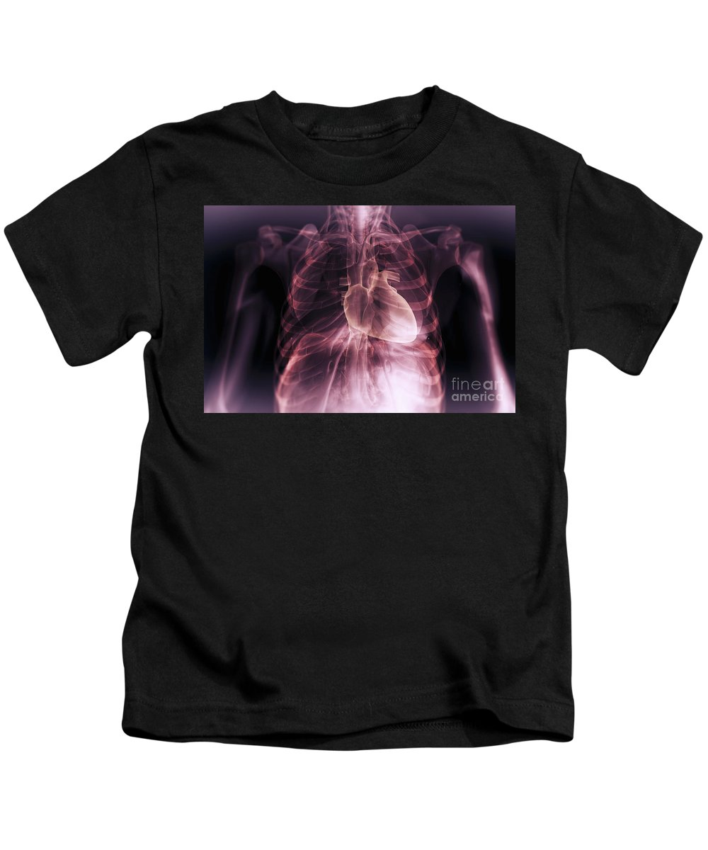 Rib Cage Kids T-Shirt featuring the photograph Heart Within The Chest by Science Picture Co