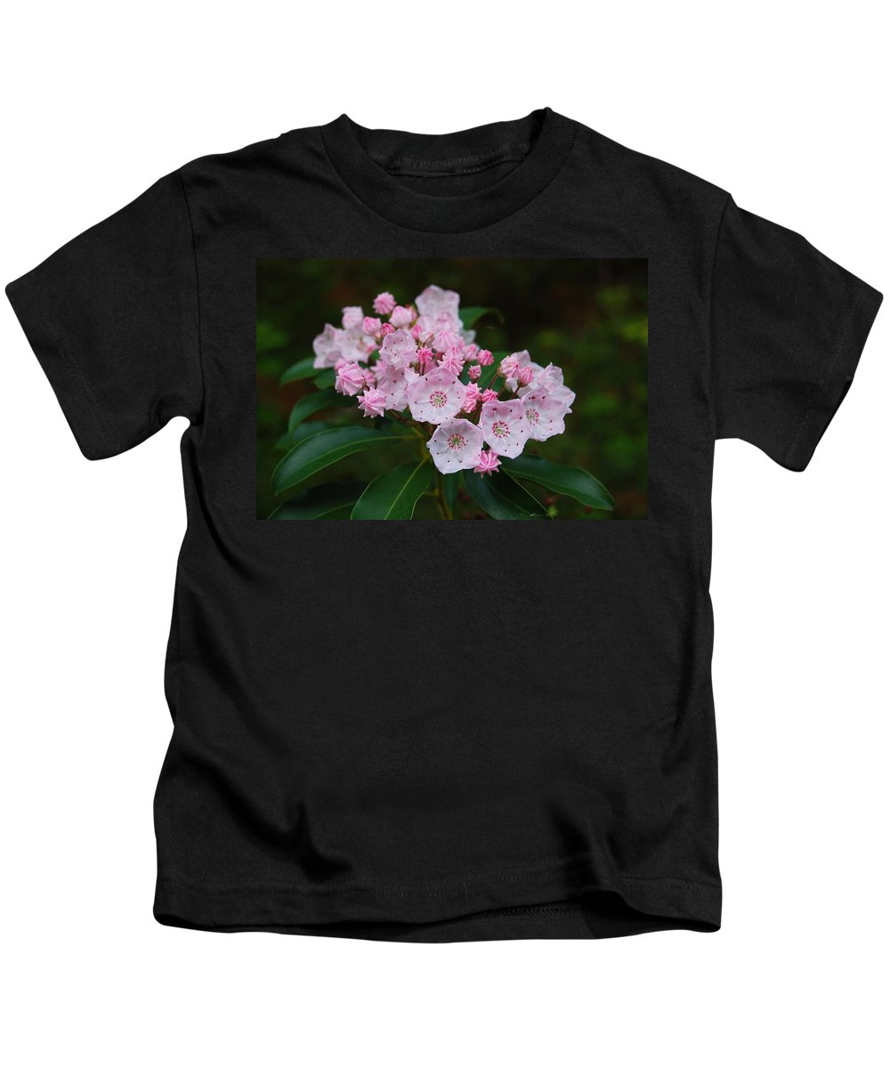 Mountain Laurel Kids T-Shirt featuring the photograph Mountain Laurel by Todd Hostetter