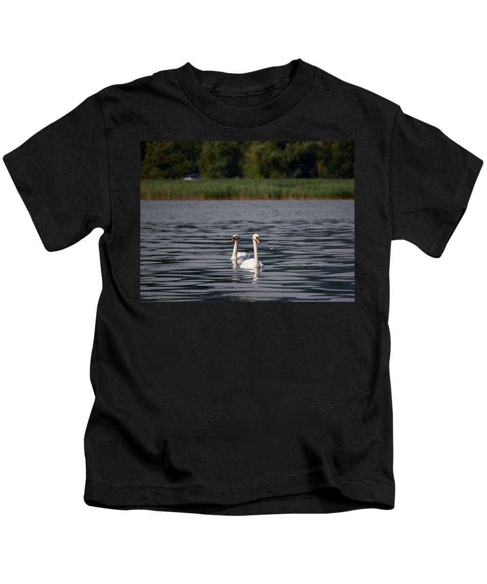 Francacorta Kids T-Shirt featuring the photograph Mute Swans. Lago Di Iseo by Jouko Lehto