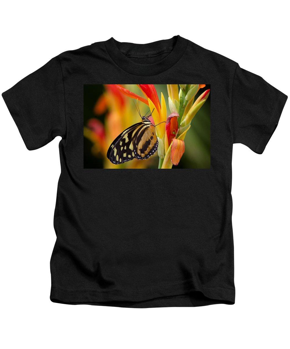 Postman Butterfly Kids T-Shirt featuring the photograph The Postman Butterfly by Saija Lehtonen