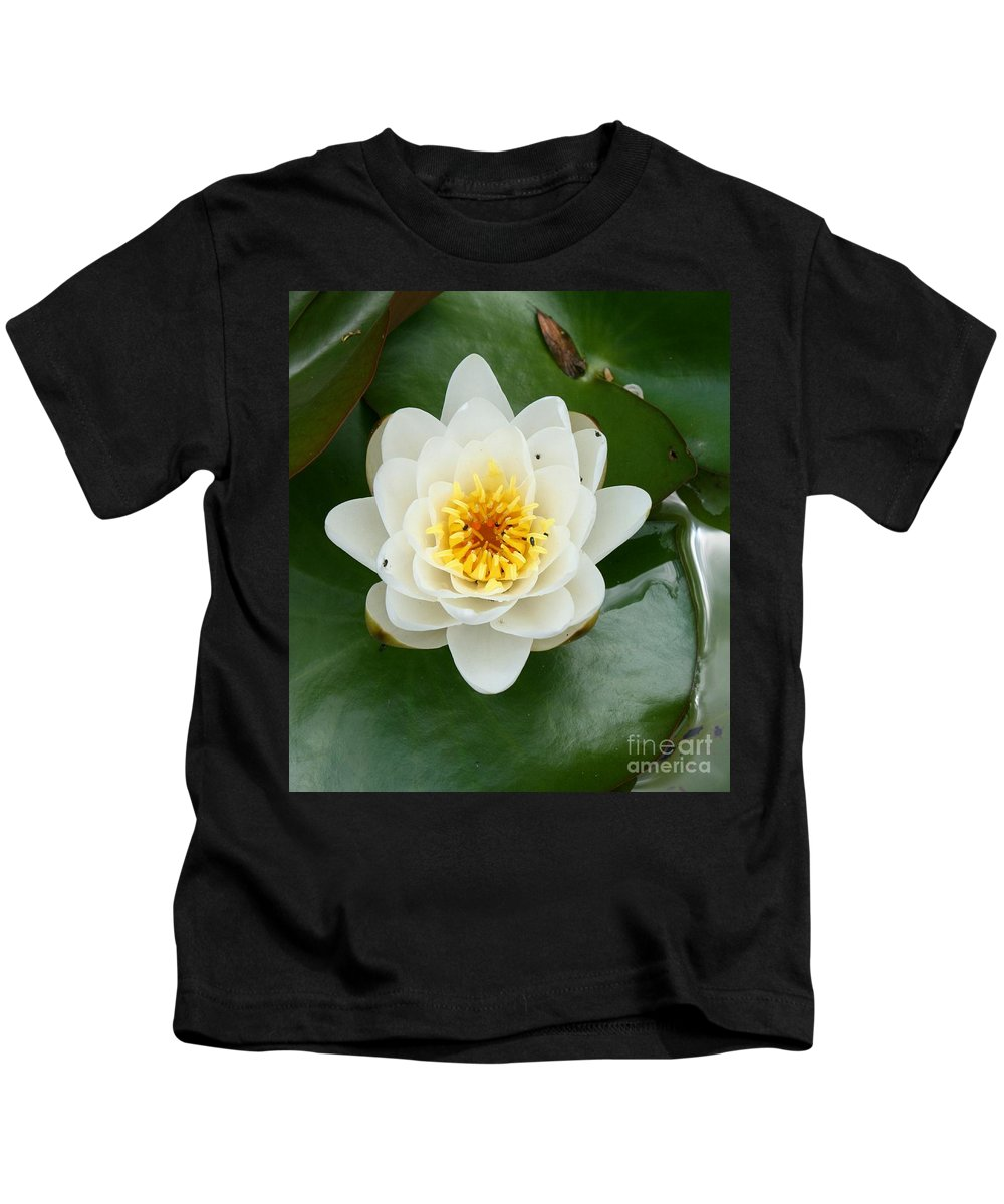 Waterlily Kids T-Shirt featuring the photograph White Waterlily by Christiane Schulze Art And Photography