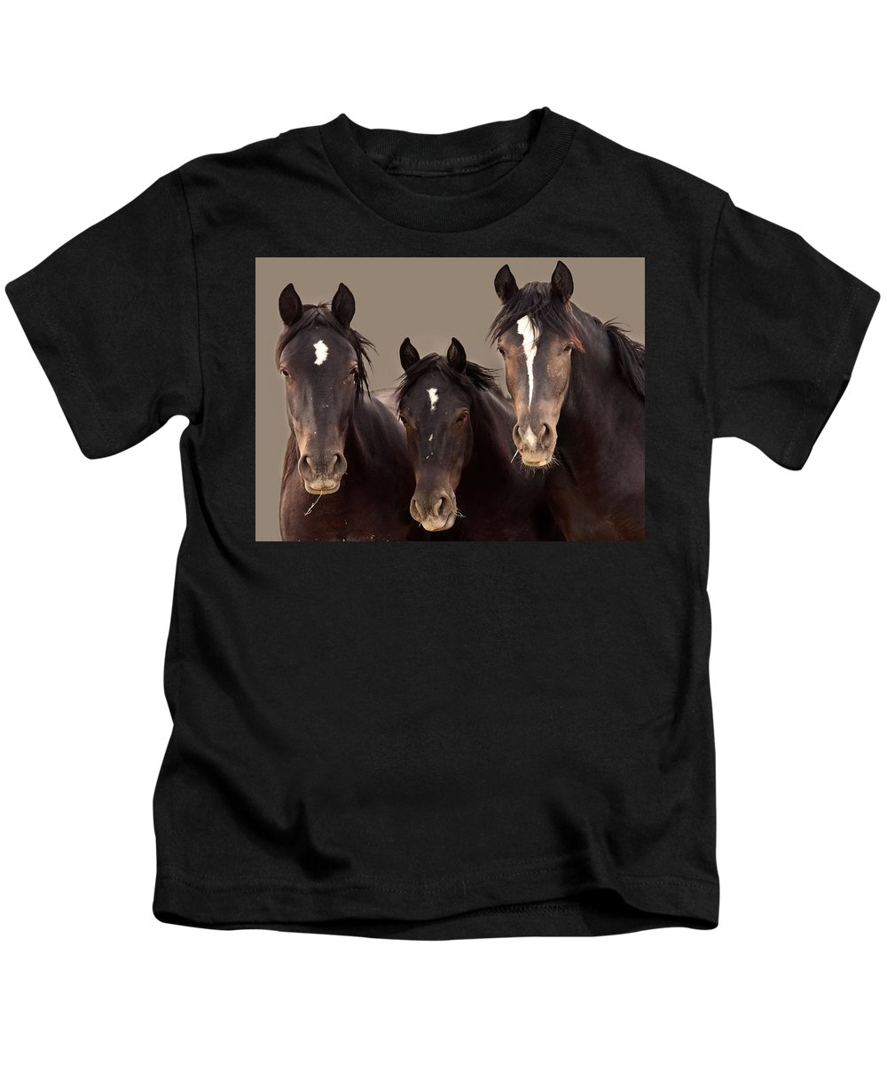 Wild Mustangs Kids T-Shirt featuring the photograph 3 Amigos Sepia Wild Mustang by Rich Franco