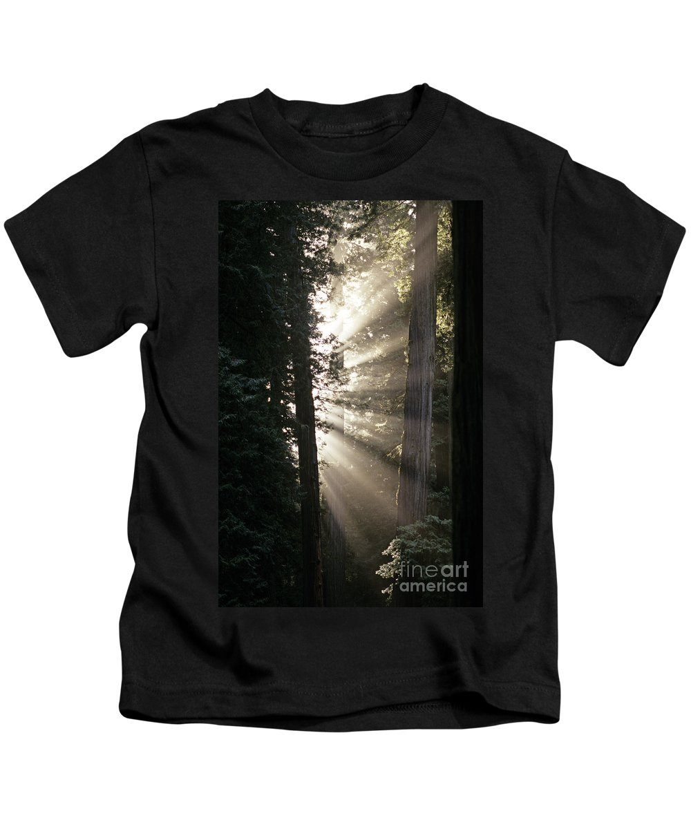 Travel Kids T-Shirt featuring the photograph Jedediah Smith Redwoods State Park Redwoods National Park Del No by Jim Corwin