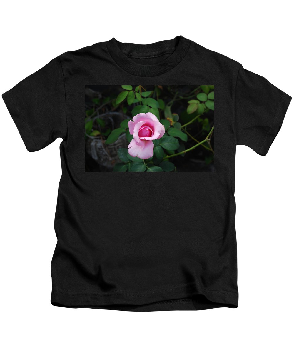 Pot Grown Kids T-Shirt featuring the photograph Rose by Robert Floyd